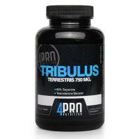 Tribulus terrestris 90% saponins - 120 capsules